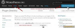 Как установить плагин в WordPress