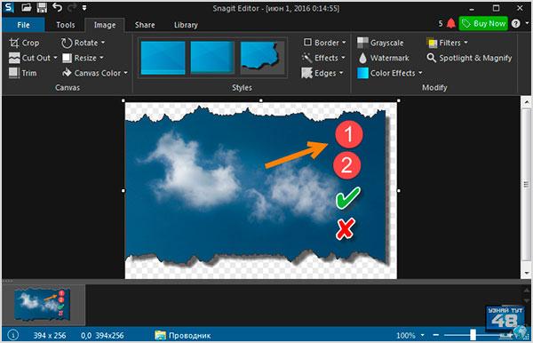 Программа Snagit для создания скриншотов